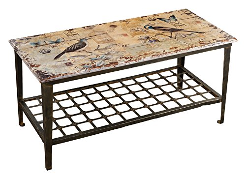 Regal Art & Gift 47.25 Inches x 22 Inches x 22.5 Inches Rustic Bird Table Outdoor Decor