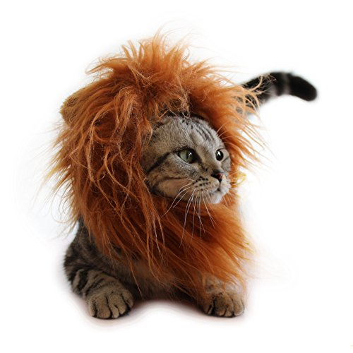 Cat Apparel Lion Mane for Cat Lion Hair with Ears for Halloween Christmas Easter Festival Cosplay Party Activity Pet Costume by AISOMA (Make Cat Costumes)