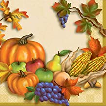 Thanksgiving Decorations - Fall Harvest Lunch Napkins - Fall Theme Napkins - 16 Count