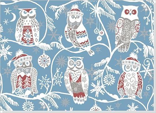 Santa Owls Boxed Christmas Cards (Greeting Cards): Amazon.co.uk ...