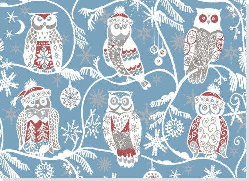 Santa Owls Deluxed Boxed Holiday Cards (Christmas Cards, Holiday Cards, Greeting Cards) ()