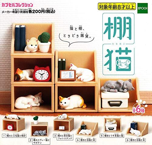 선반 고양이 [전 6 종 세트 (풀 무료 초대권)