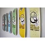 Sk8ology Skateboard Deck Display
