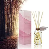 LOVSPA Cashmere Woods Reed Diffuser Oil Set with