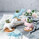 Dinosaur Shape Ceramic Succulent Planter Pot with