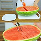 Grizzly Stainless Steel Watermelon Fruit Dig Corer Cutter & Server, watermelon fruit slicer