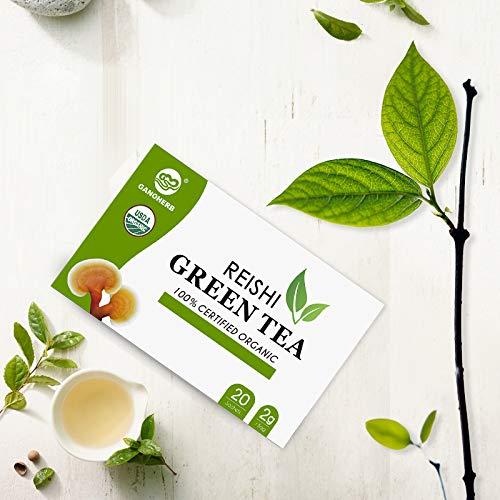GANOHERB Organic Reishi Mushroom Green Tea Bags - Organic Green Herbal Tea with Organic Ganoderma Lucidum -Boost Immune System& Stress Relief& Full Energy-Vegan,Paleo,No Sugar,0.07 Ounce (20 count)