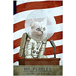 Mr Pebbles The First Cat In Space Video Gaming Poster 12x18