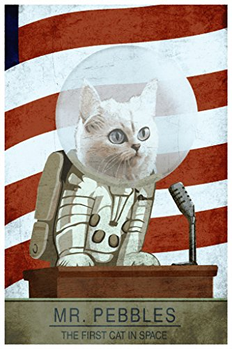 cat in space poster - 6