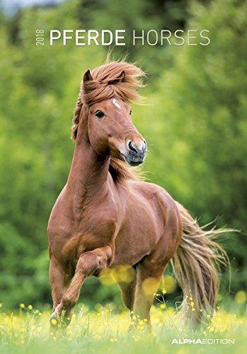 Pferde 2018 - Horses - Bildkalender (24 x 34) - Tierkalender
