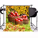 AOFOTO 6x6ft Apples in Basket Backdrop Fall Scenic Photography Background Bio Orchard Autumn Harvest Kid Girl Artistic Portrait Thanksgiving Rustic Photo Shoot Studio Props Video Drop Wallpaper Drape