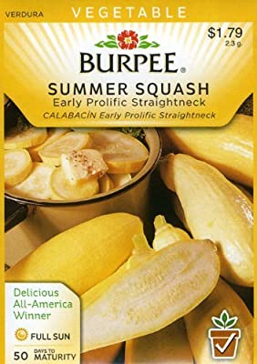 Burpee 61071 Squash, Summer Early Prolific Straightneck Seed Packet