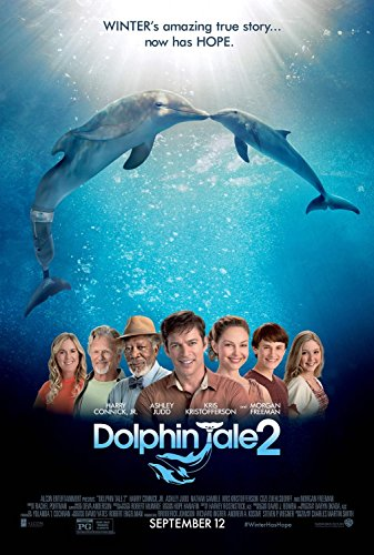 dolphin tale 2 movie - 8