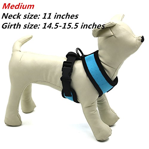 Cute dog harness!!