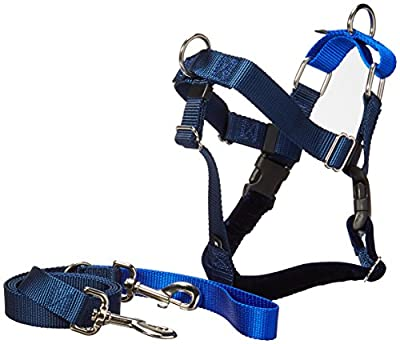 Freedom No Pull Velvet Lined Dog Harness and Leash Training Package Royal Blue Large by Wiggles Wags Whiskers