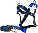 Freedom No Pull Velvet Lined Dog Harness and Leash Training Package Royal Blue Large