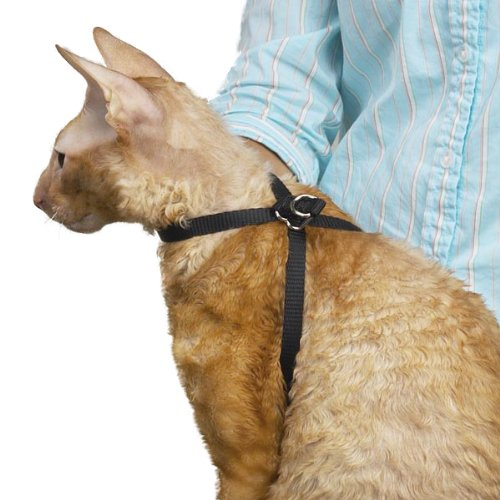 Top Performance Nylon Adjustable Cat Grooming Harness, 1/2-I