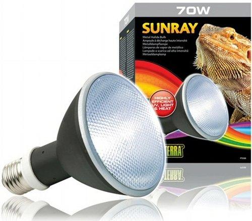 Exo Terra PT2328 Metal Halide 70W Lamp for PT2325 by Exo Terra