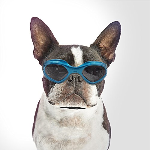 Namsan Pet Goggles Doggles Goggles Sunglasses For Dog -Blue from Namsan