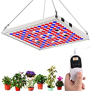 High Times Best Led Grow Lights