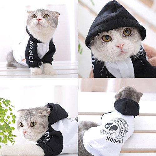 PDFGO Ropa Para Mascotas Artículos Para Mascotas Ropa Para Gatos Marea Gatitos Otoño E Invierno Cálido Y Lindo,White-XL: Amazon.es: Ropa y accesorios