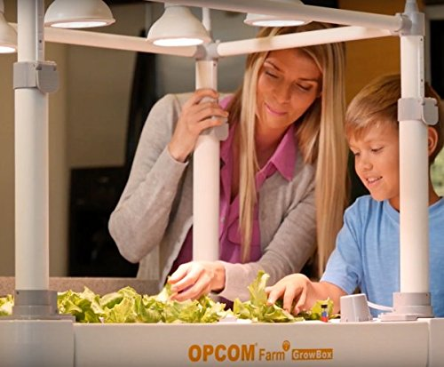 51309RYfeJL - OPCOM® Farm GrowBox (High Capacity, Hydroponics, indoor garden & farm, greenhouse,Growing herb, vegetable, flower, fruit)