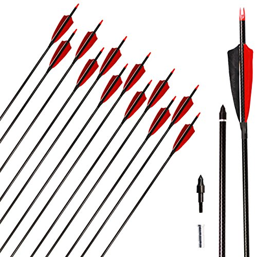 500 Carbon Fiber - SinoArt Carbon Arrows 100% Carbon Fiber Shaft 340/500 Spine Real Feathers Press-fit Nocks Replaceable Points Hunting Arrows Targeting Arrows Recurve Bow (6 12 Pack) (12 pack, 500 Spine)