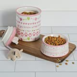 Bone Dry DII Ceramic Medium Pet Bowls for Food