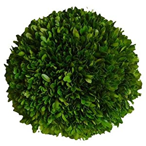 "Mills Floral Company Boxwood Ball 6"" 69"