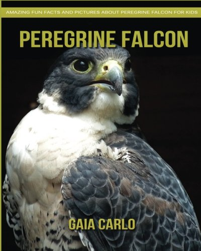 Peregrine Falcon: Amazing Fun Facts and Pictures about Peregrine Falcon for Kids