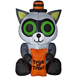 Halloween Inflatable Decorations Yard Outdoor Lights Up Kids Fun Trick o Treat Raccoon