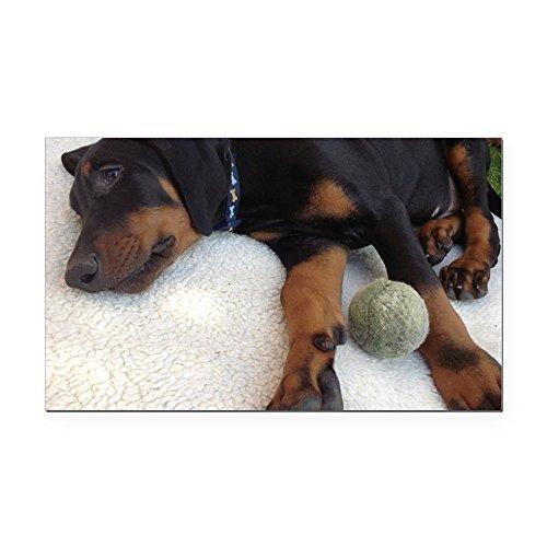 - CafePress - Dobermann Puppy Rectangle Car Magnet - Rectangle Car Magnet, Magnetic Bumper Sticker