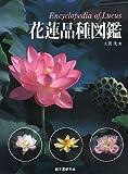 花蓮品種図鑑