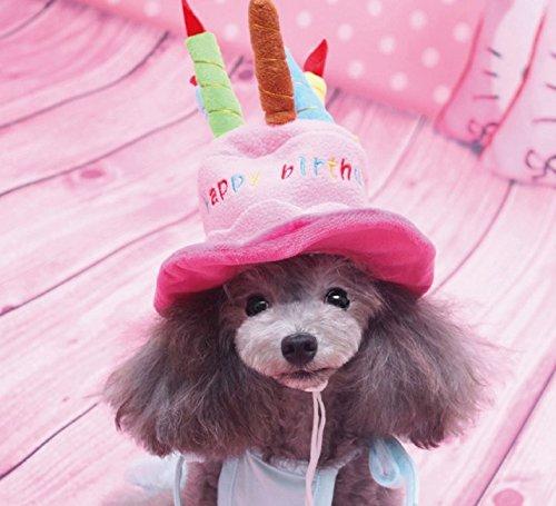 犬用パーティーハット