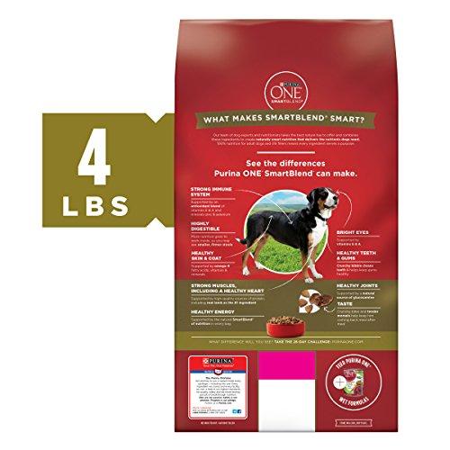 Purina ONE Natural Dry Dog Food, SmartBlend Lamb & Rice Formula - (4) 4 lb. Bags