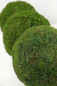 "Richland Moss Balls Natural 6"" Set of 6"