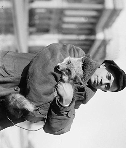 1920 Photo Geo  M  Green Holding Fox Quality Reproduction Black   White Photograph C3
