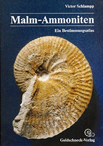 Malm-Ammoniten: Bestimmungsatlas der Gattungen und Untergattungen aus dem Oberjura Süddeutschlands, der Schweiz und angrenzender Gebiete