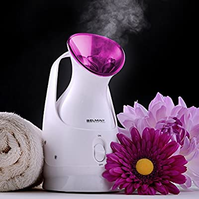 Facial Steamer Skin Care Nano Ionic Sauna Spa Steamer