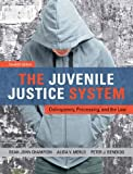 The Juvenile Justice System : Delinquency, Processing, and the Law, Champion, Dean J. and Merlo, Alida V., 0133009475