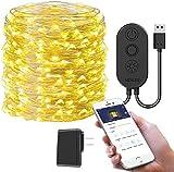 MINGER USB String Light, 33Ft Fairy String Light