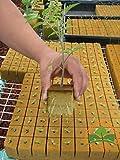 552 hydroponics grow starter cubes by Prorganics