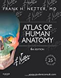 img - for Atlas of Human Anatomy: Including Student Consult Interactive Ancillaries and Guides, 6e (Netter Basic Science) book / textbook / text book