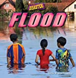 img - for Flood (Little Bits! First Readers: It's a Disaster!) by M. Jean Greenlaw (2014-01-06) book / textbook / text book