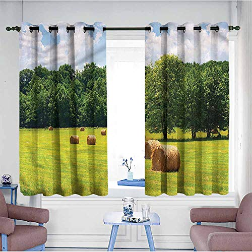 Mdxizc Soft Curtain Rustic After Harvest Idyllic Nature Breathability W55 xL45 Suitable for Bedroom,Living,Room,Study, etc.