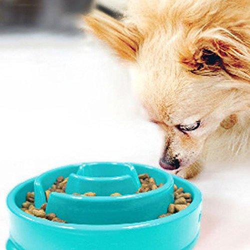 Efanr Plastic Dog Bowl Flower Labyrinth Design Healthy Preventing Choking Feeder Slow Eating Cat Pet Bowl Prevent Gluttony Obesity slow Food Bowls Pet Supply (Blue)