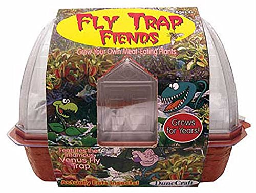 DuneCraft Windowsill Greenhouses – Venus Fly Trap