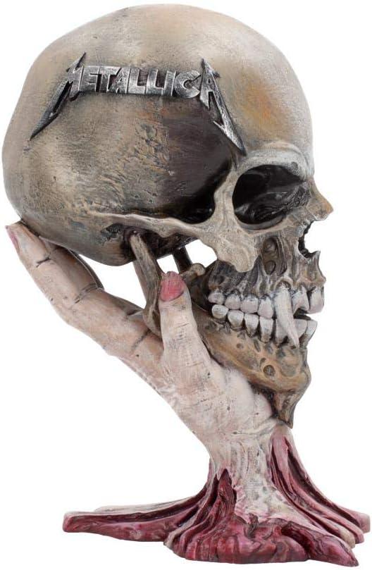Nemesis Now Metallica Sad But True Skull - Cráneo de Resina (22 cm), Color Gris Pardo, Talla única: Amazon.es: Hogar