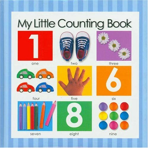 My Little Counting Book PDF