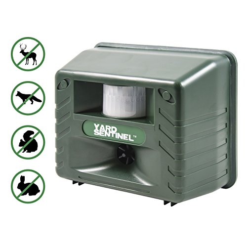 Scare Cat (Yard Sentinel, Outdoor Electronic Pest Animal Ultrasonic Repeller, Animal Control, Pest Control, Cat Repellent, Dog Repellent, Deer Repellent, Mice Repellent, Bird)